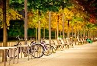 До кінця року у Києва з'явиться концепція розвитку велоінфраструктури