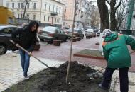 Київ - чудове місто, щоб пустити коріння...А разом з проектом Посади Дерево ми можемо зробити його ще кращим!
